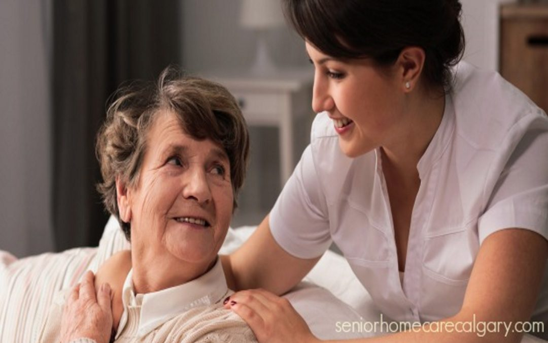 Homecare for Seniors – Choosing an Agency vs. Hiring Privately